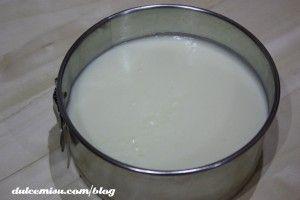 Tarta-de-yogur-y-maracuyá-con-base-de-oreo-(9)