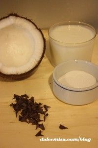 helado-de-coco-y-chocolate-con-heladera-zoku-(5)